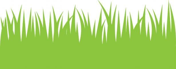 lawn care clipart overgrown grass