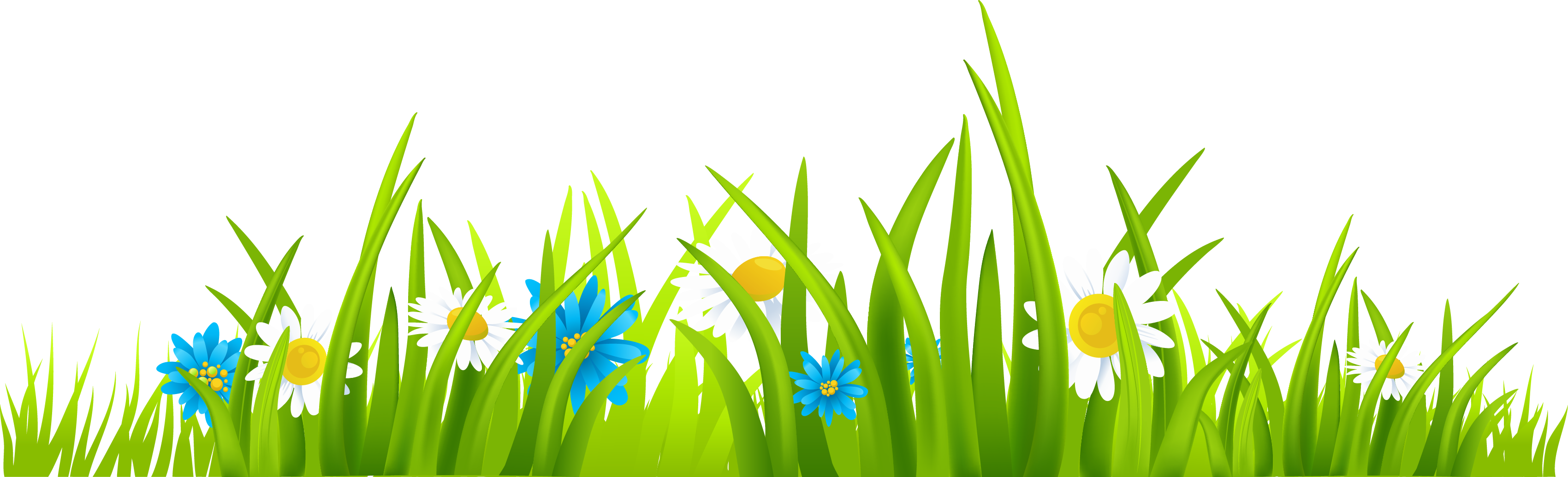 Ground with flowers picture. Grass clipart png format banner library download