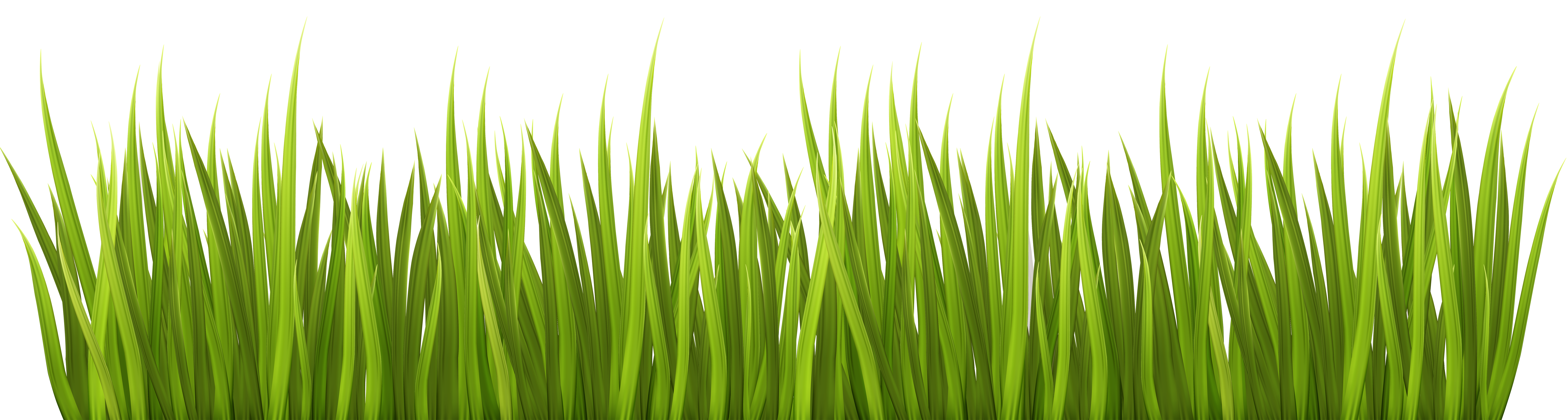 Spring transparent clip art. Grass clipart png format picture royalty free