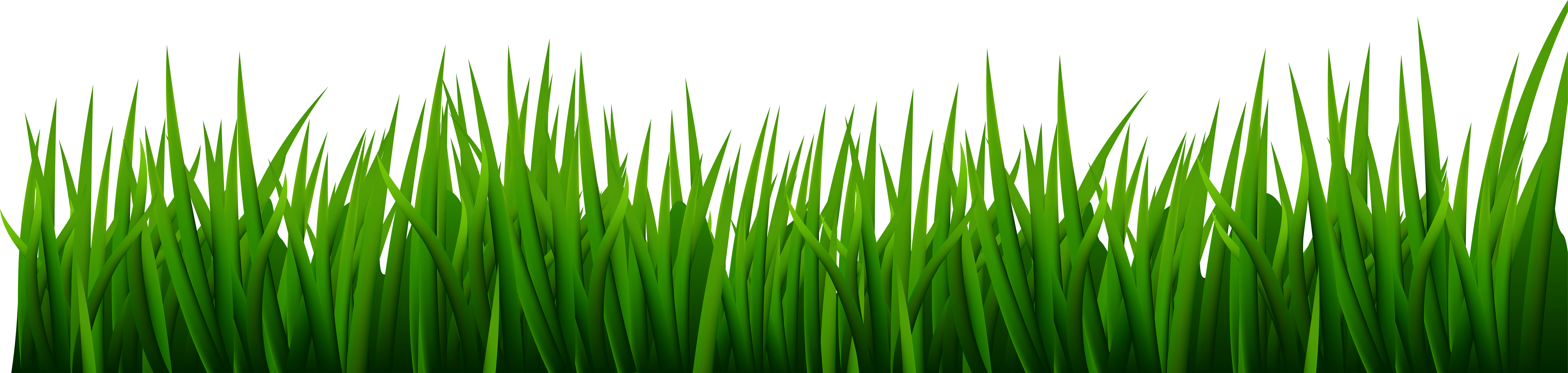 Clip art image gallery. Grass clipart png format vector black and white