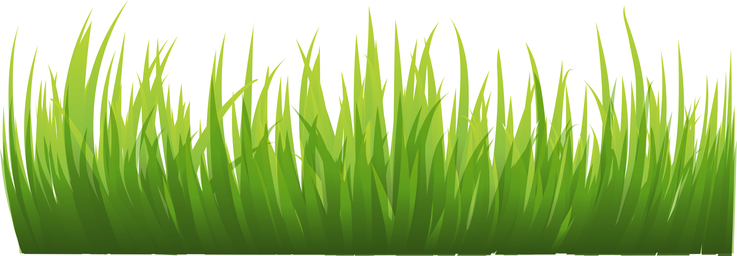 Grass clipart png format. Images pictures image green