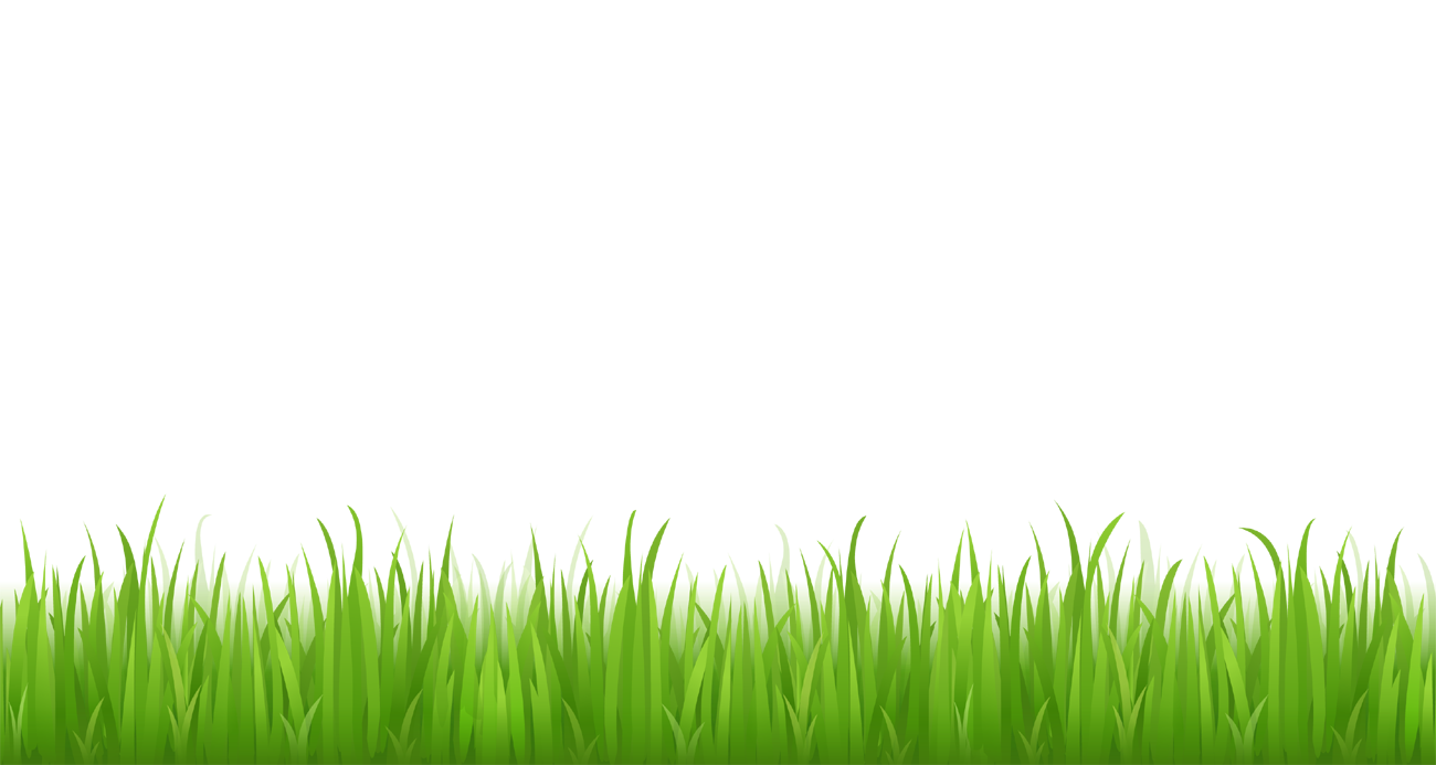 Grass clipart png format. Picture for bottom design