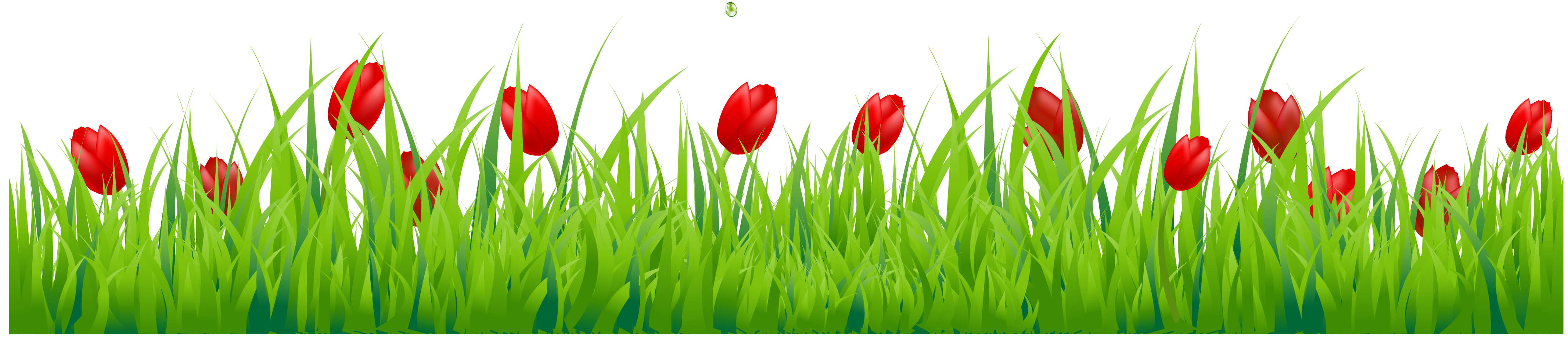 Spring flowers border png. Grass with red tulips