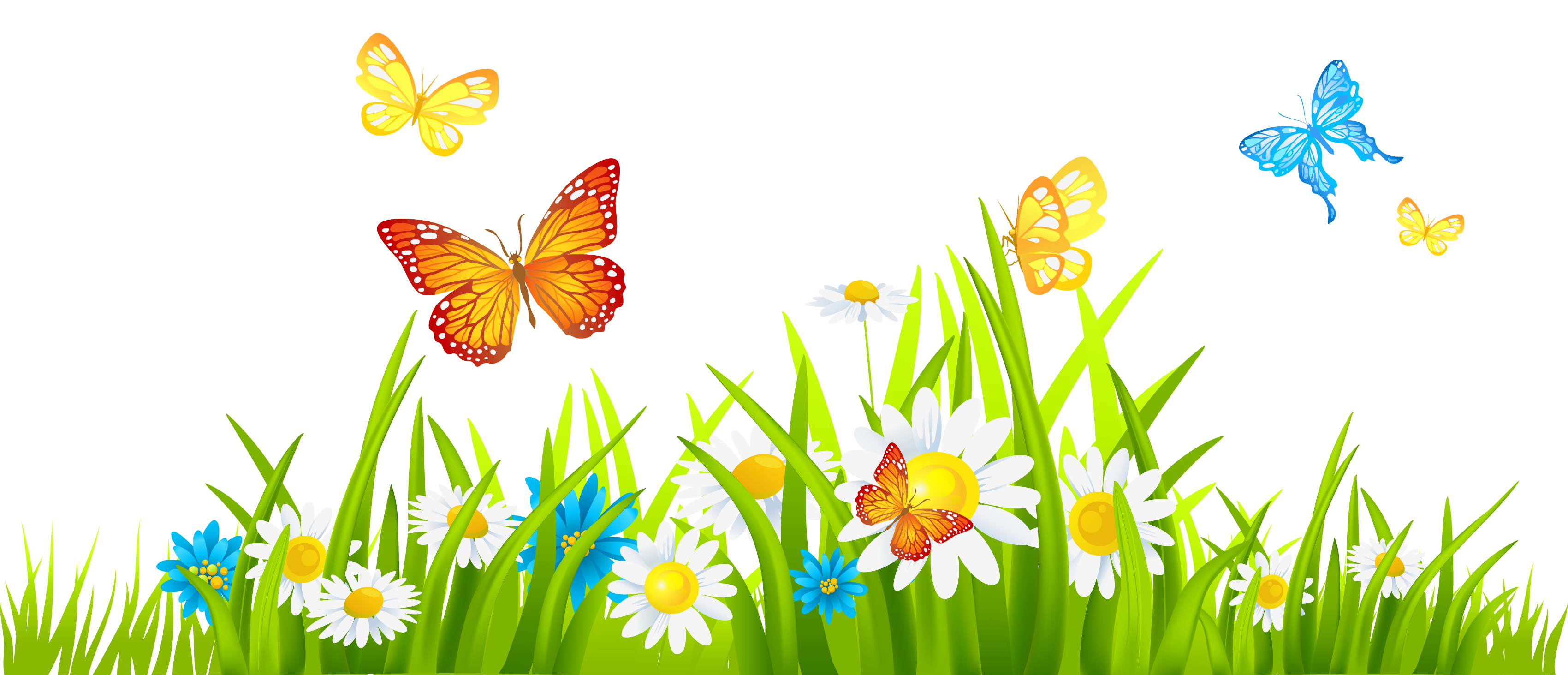 Tulip transparent grass. With colorful tulips png