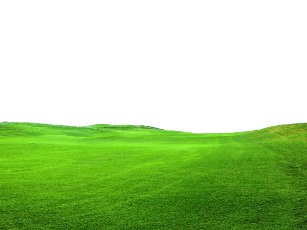 Grass field png. Green file use freely