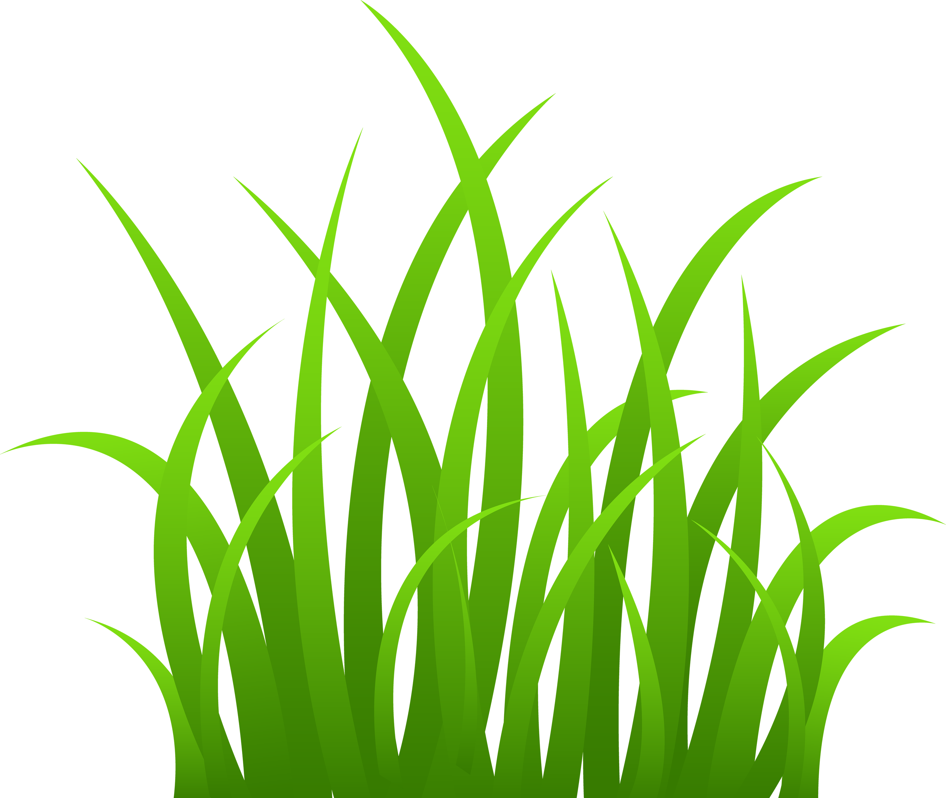 Grass image png. Images pictures green picture