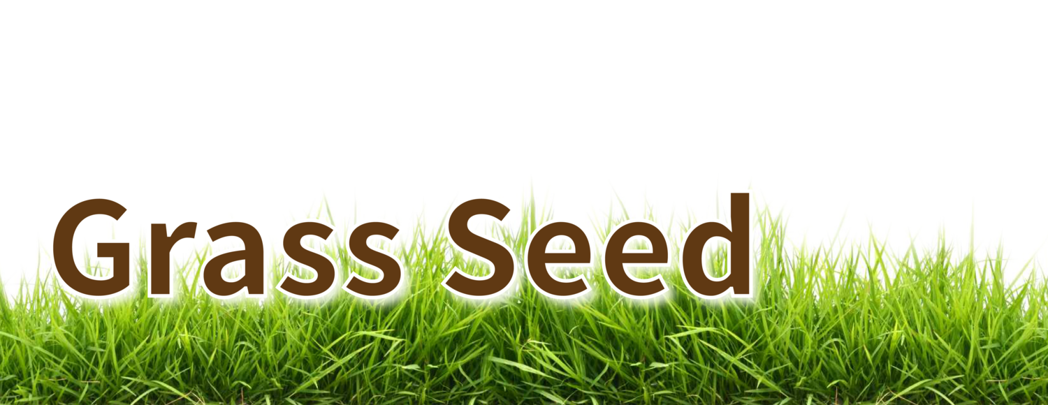 Grass in air png. Seed jamestown feed and