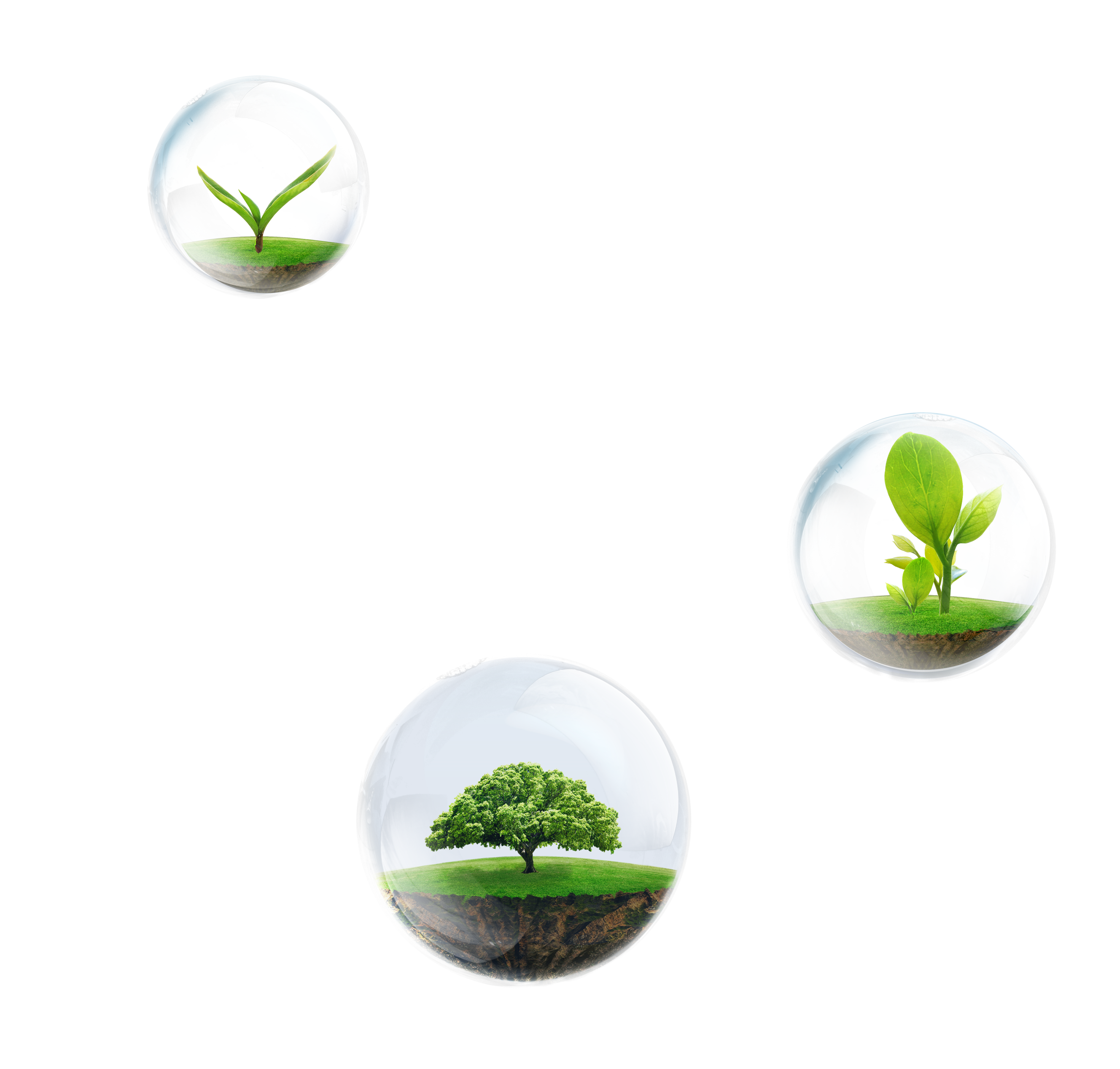 Grass in air png. Laptop dell business sino
