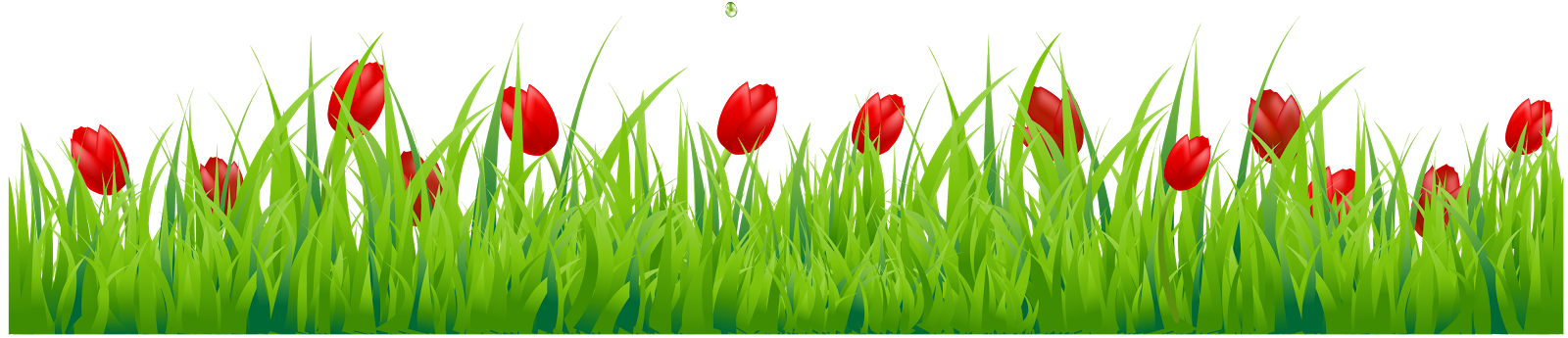 Grass photoshop png. Images for studiopk