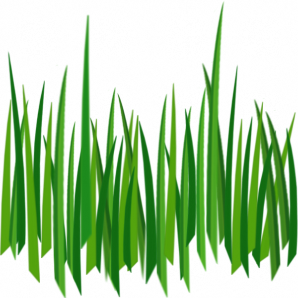 Grass png cartoon. Image purepng free transparent
