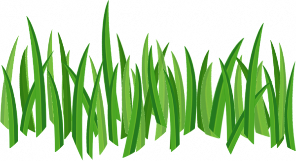 Grass png cartoon. Green five isolated stock