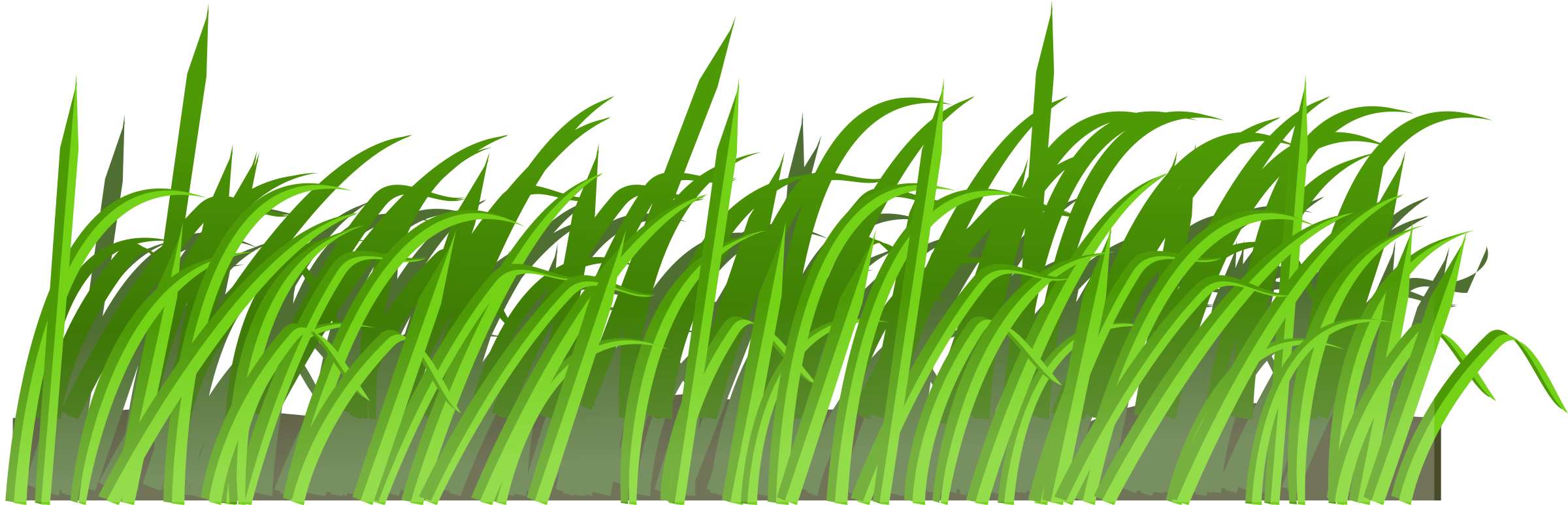 Grass Texture Transparent & PNG Clipart Free Download - YA-webdesign