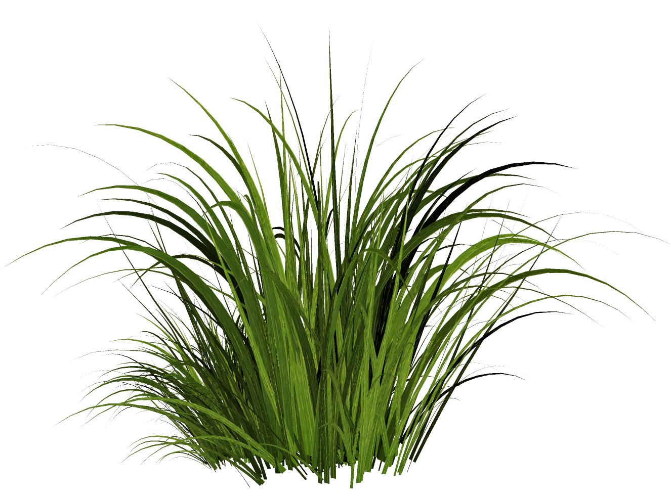 Grass texture png. Solved the material is