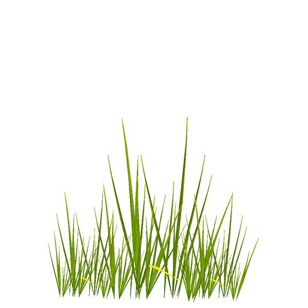 Grass texture png. Textures on behance for