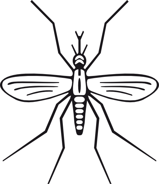 Mosquito clip jpeg. Grasshopper drawing outline clipart