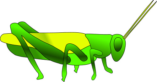 grasshopper clipart many
