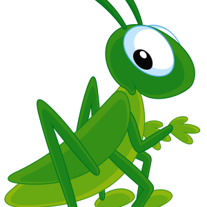 Grasshopper clipart nymph grasshopper. Png images free download