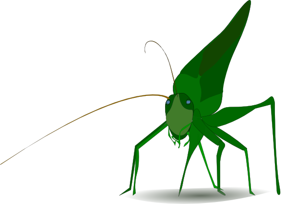 Grasshopper vector food chain. Drawing outline clipart panda