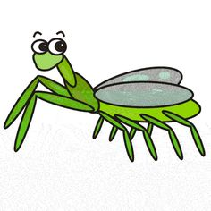grasshopper clipart praying mantis