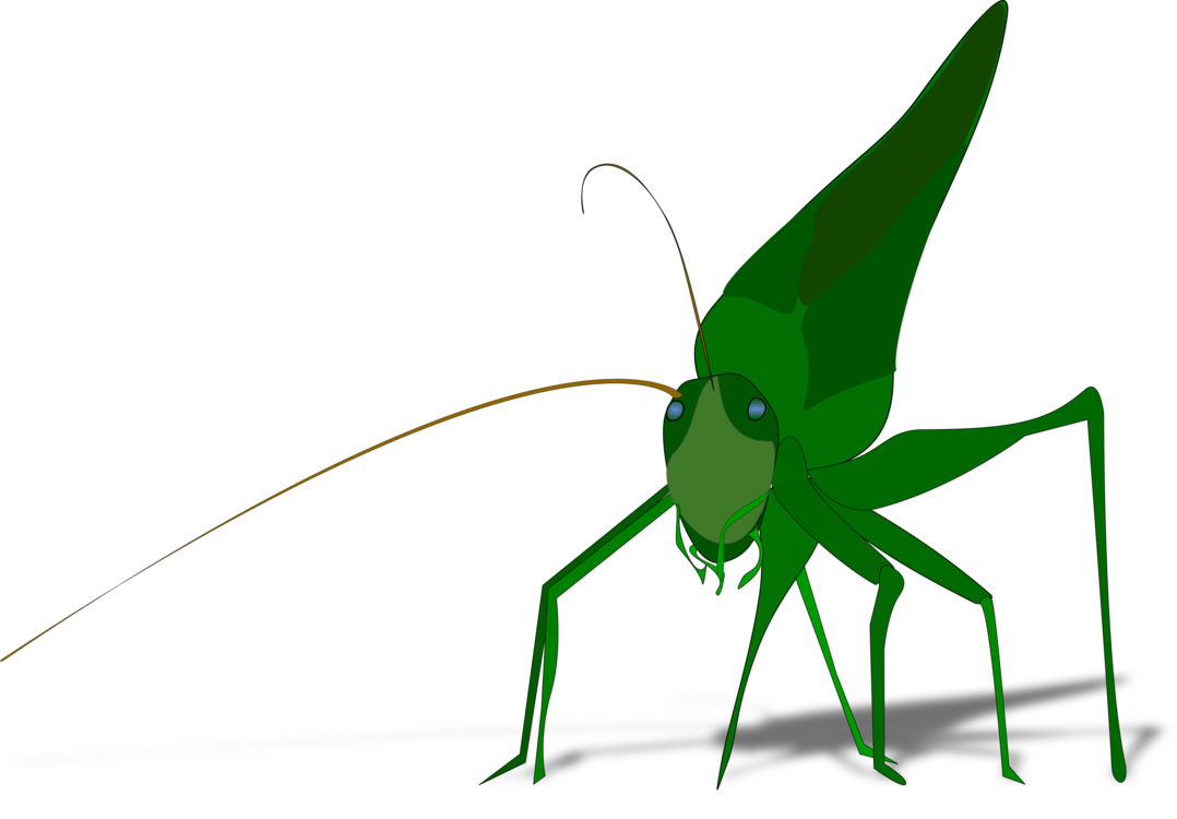 Grasshopper vector abstract. The ant and drawing