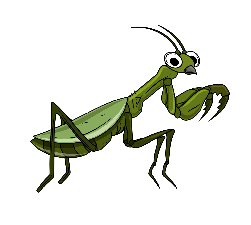 Grasshopper vector mantis. Clip art free