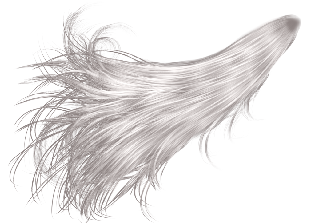 Gray hair png. Fantasy by hellonlegs on