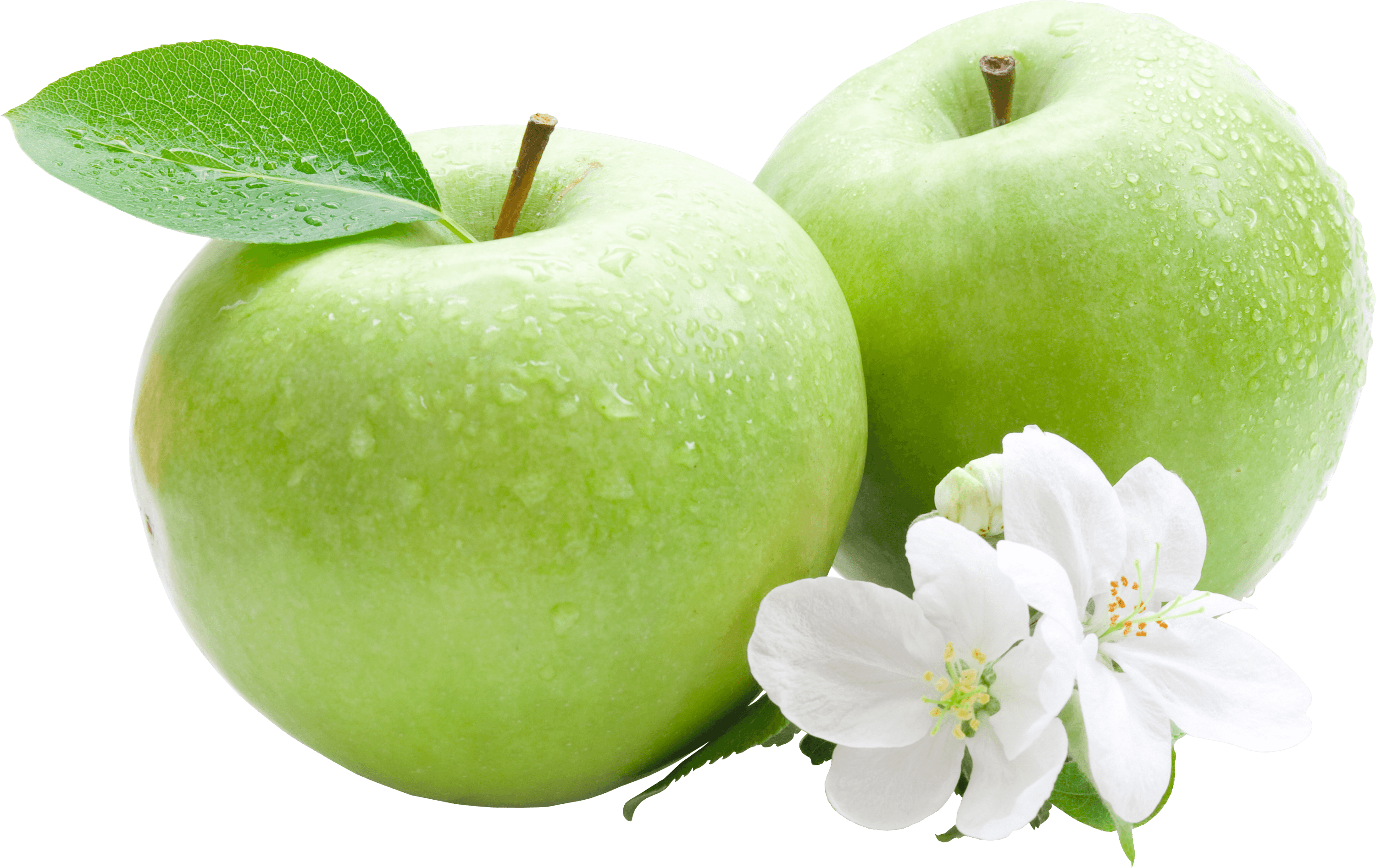 Green apples png. Two transparent stickpng