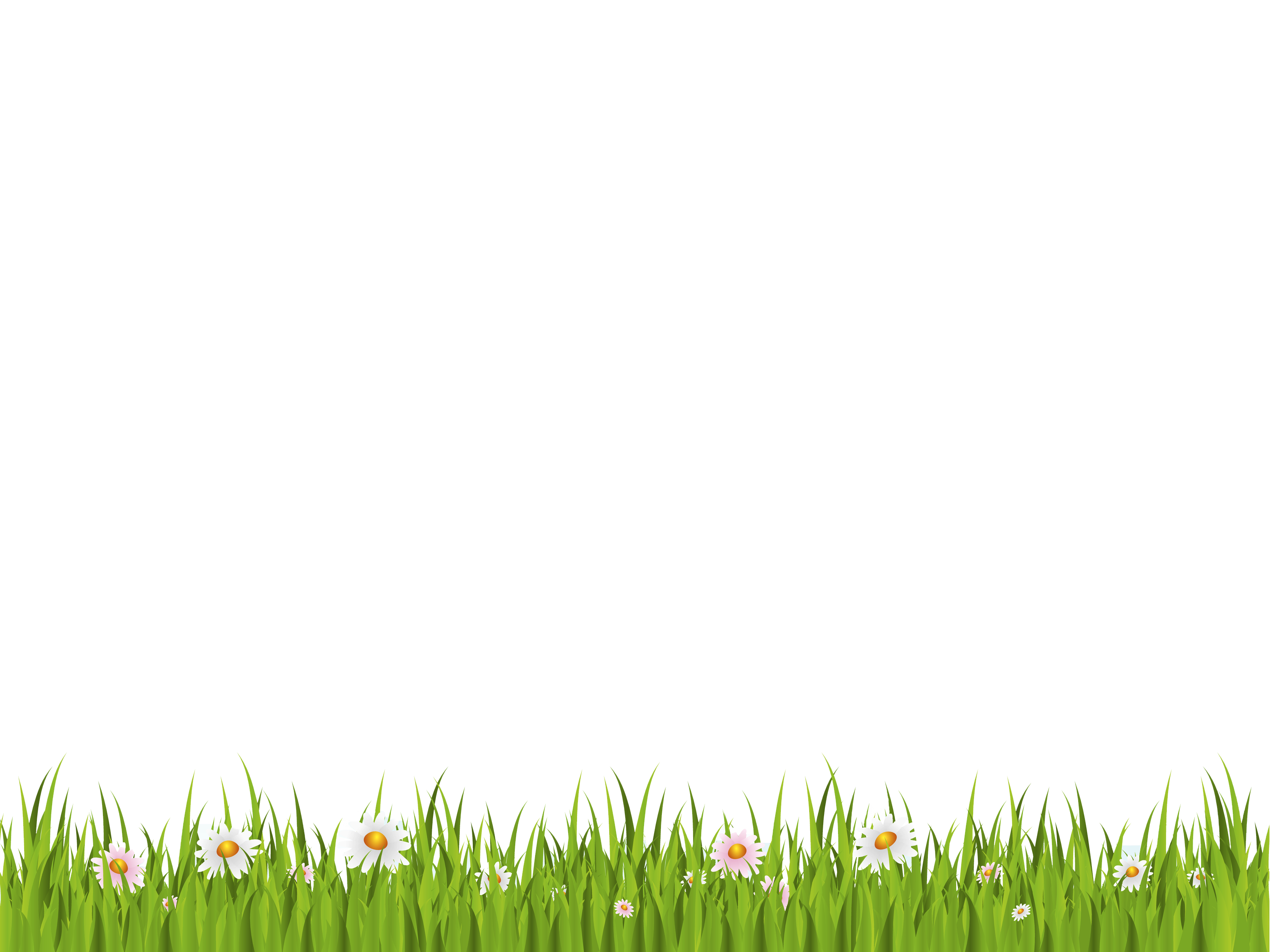 Green background png. Grass on white free