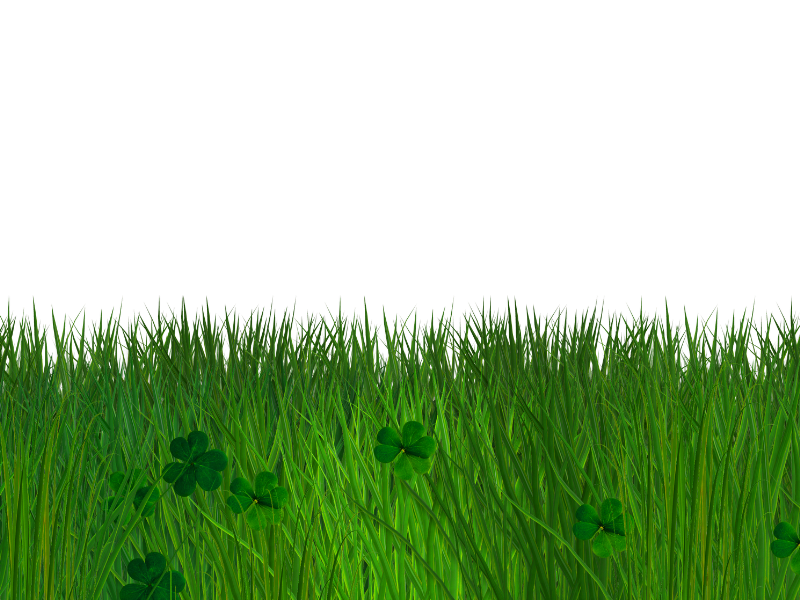 Green background png. Grass and clover border