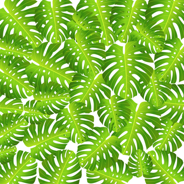 Green background vector png. Topical leaf tropical flower