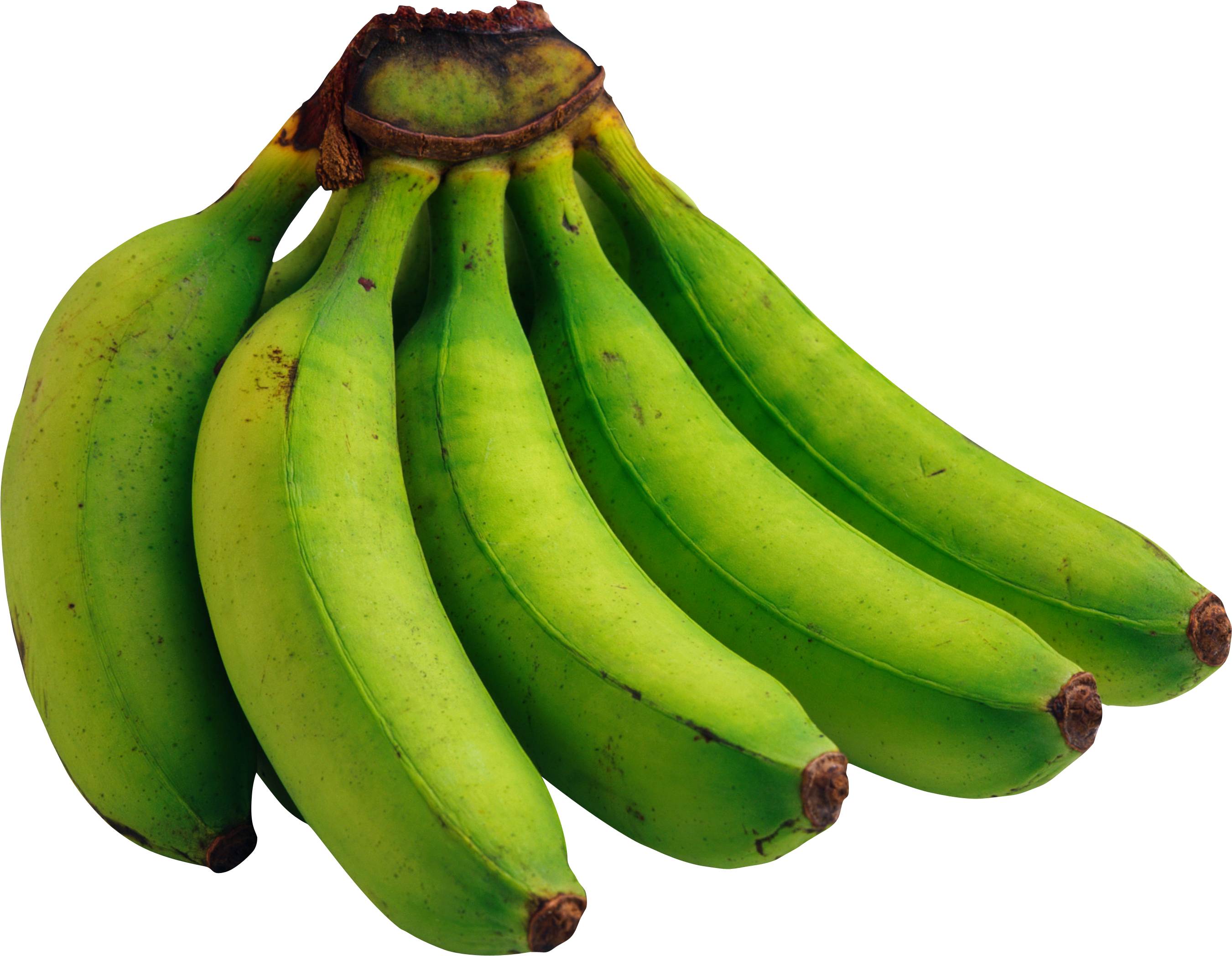 Bananas transparent green. Png image free picture
