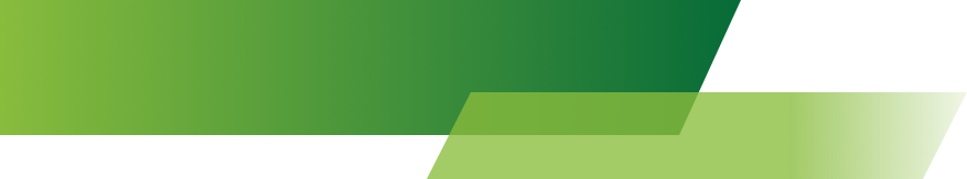 Banner png green. Images in collection page