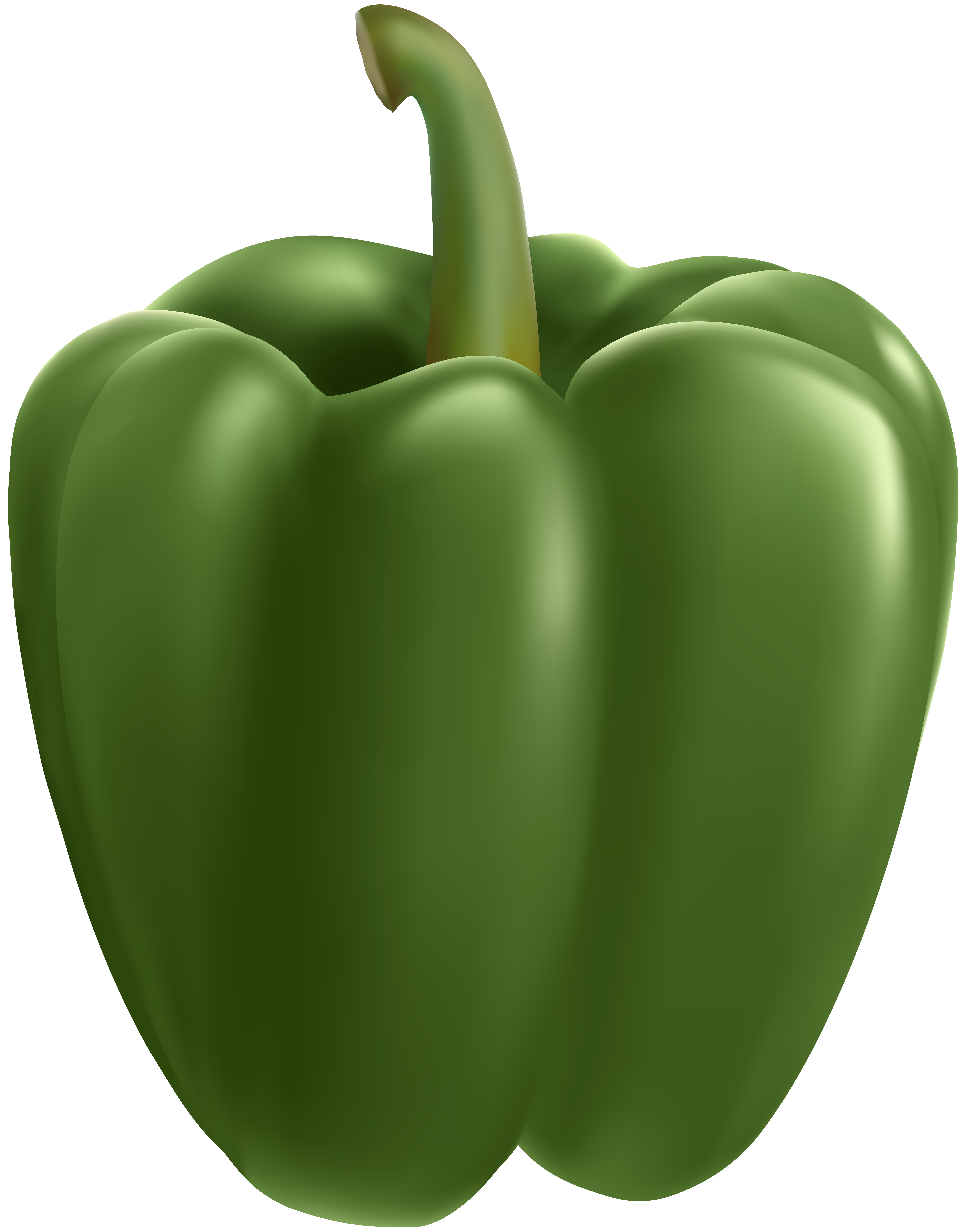 Green bell pepper png cartoon. Transparent clip art image