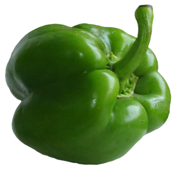 Green bell peppers png. Pepper picture gallery yopriceville