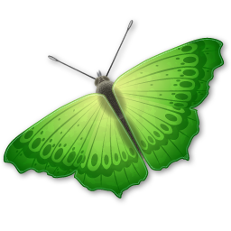Green butterfly png. Image free picture download