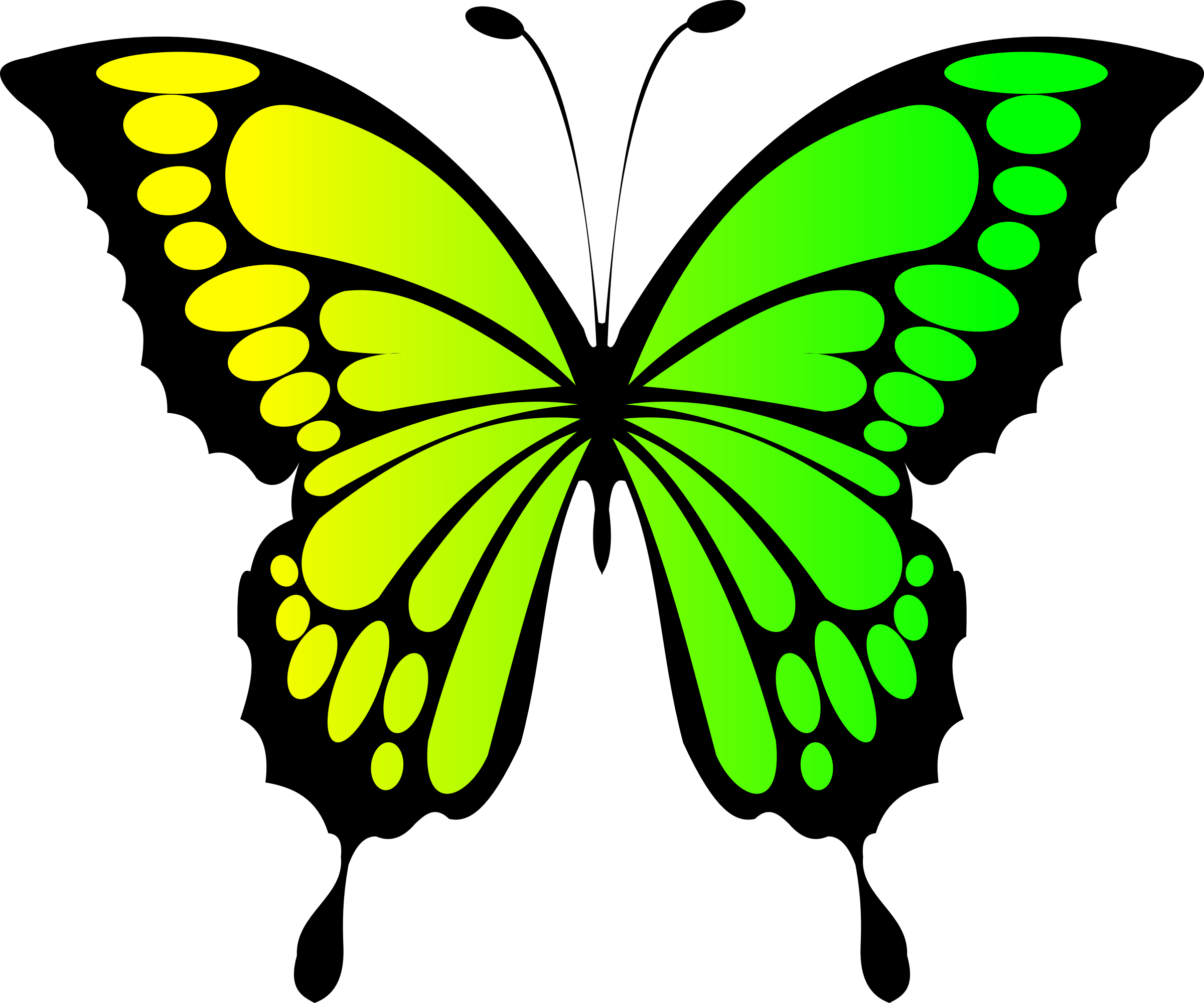 Green butterfly png. Yellow icons free and