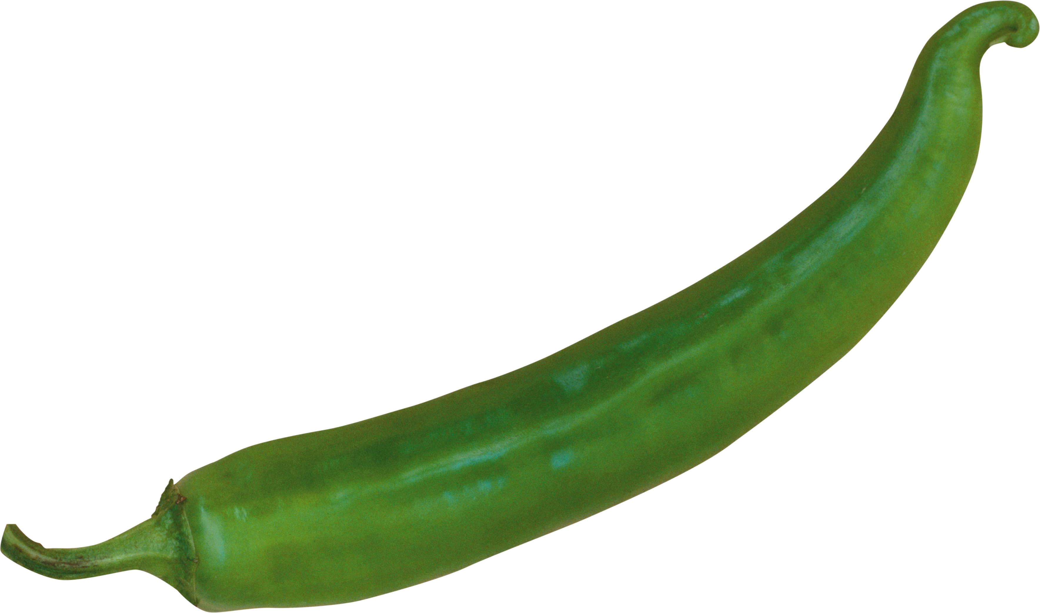 Green chilli png. Pepper image free download