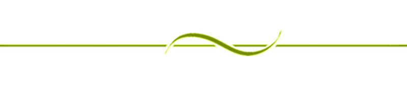 Green line png. The room an interesting