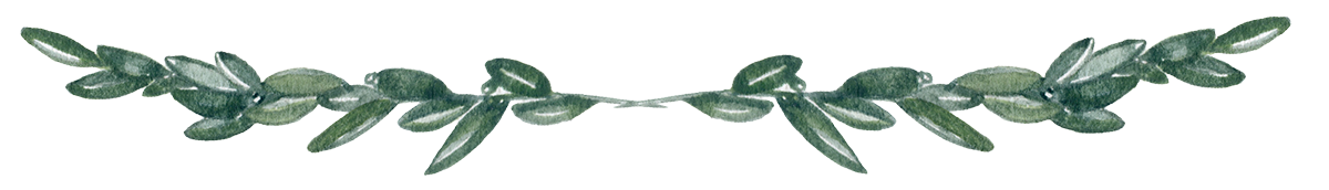Green divider png. Page transparent images pluspng