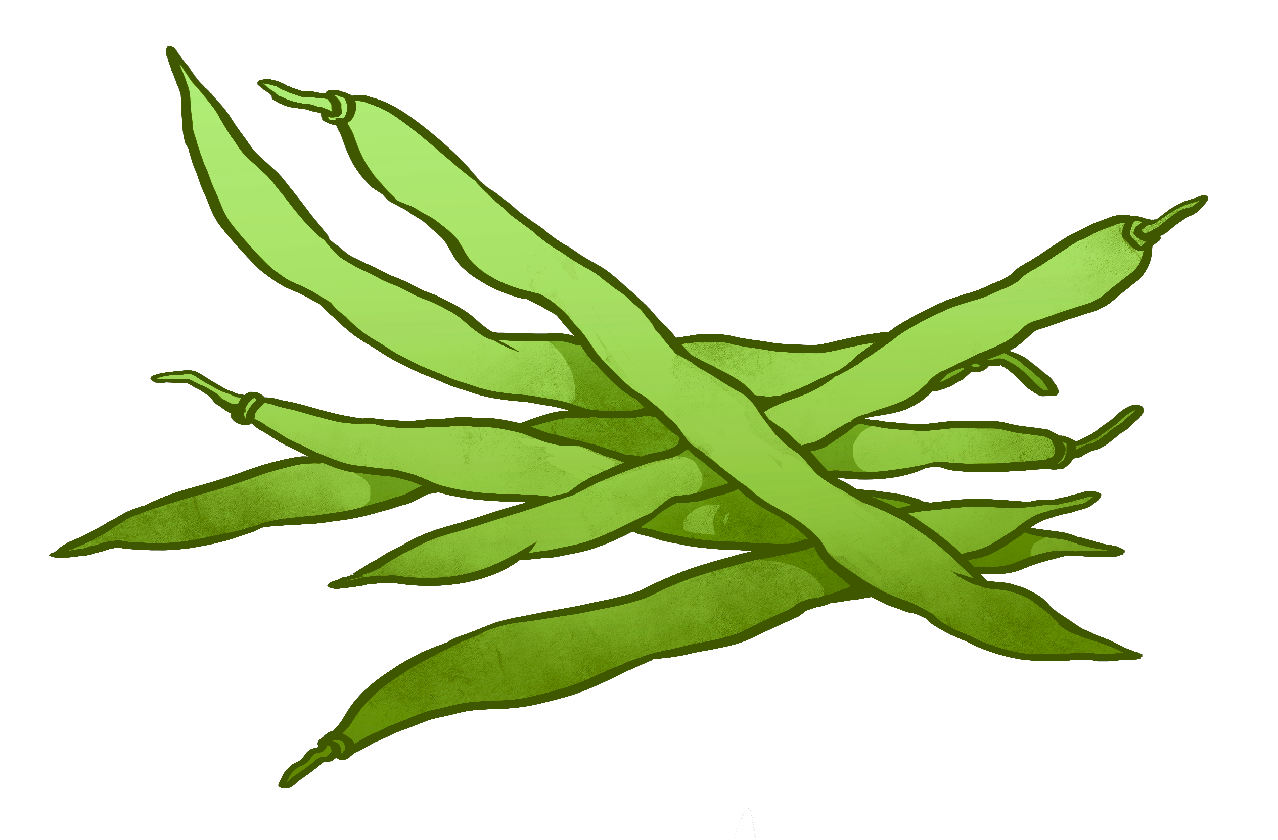 Green drawing. String beans at getdrawings