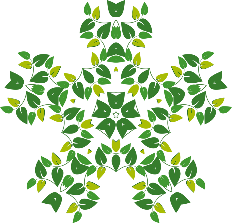 Green drawing abstract. Leaf map symmetry public