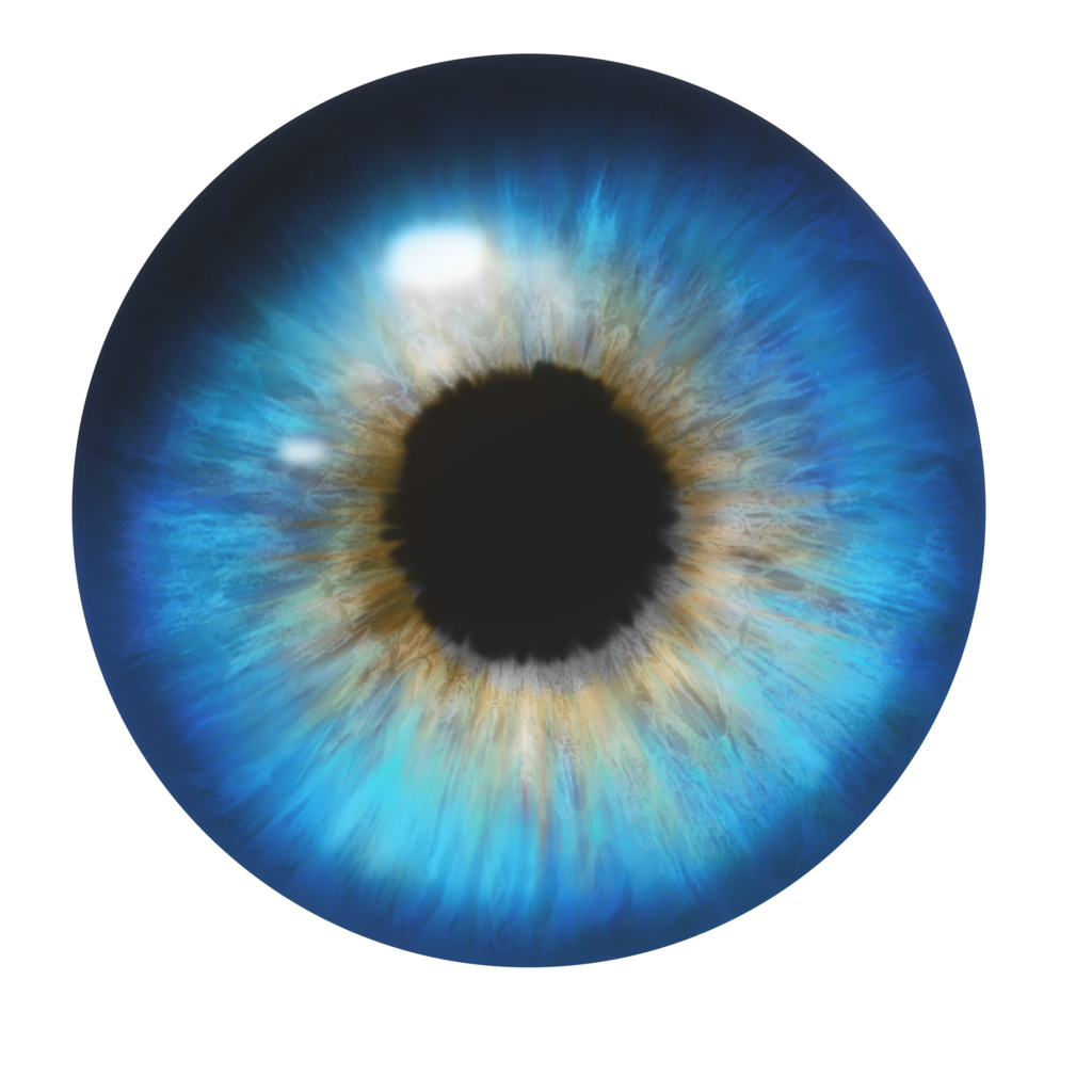 Eye transparent pictures free. Eyes l png image transparent download