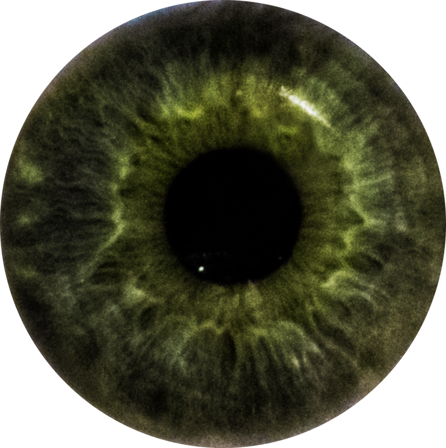 Green eye color png. Stephen s iris by