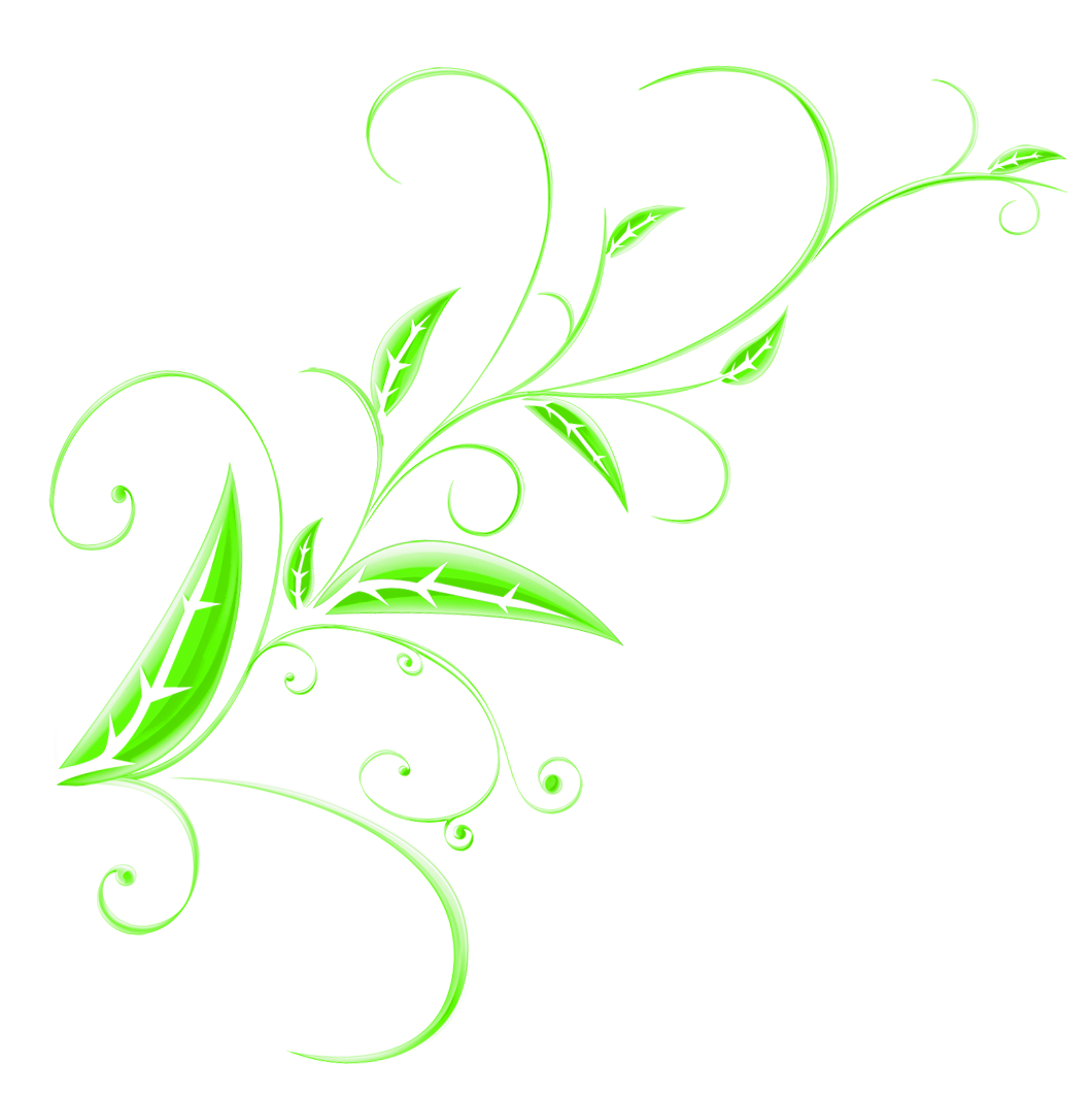 Green floral png. Ornament picture gallery yopriceville