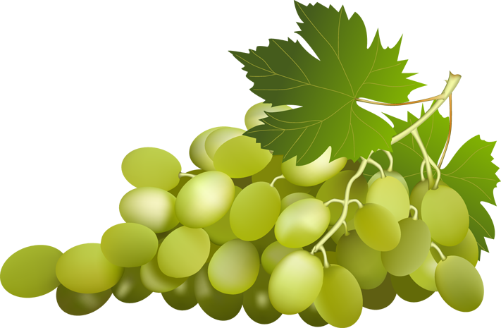 Green grapes png. Images transparent free download