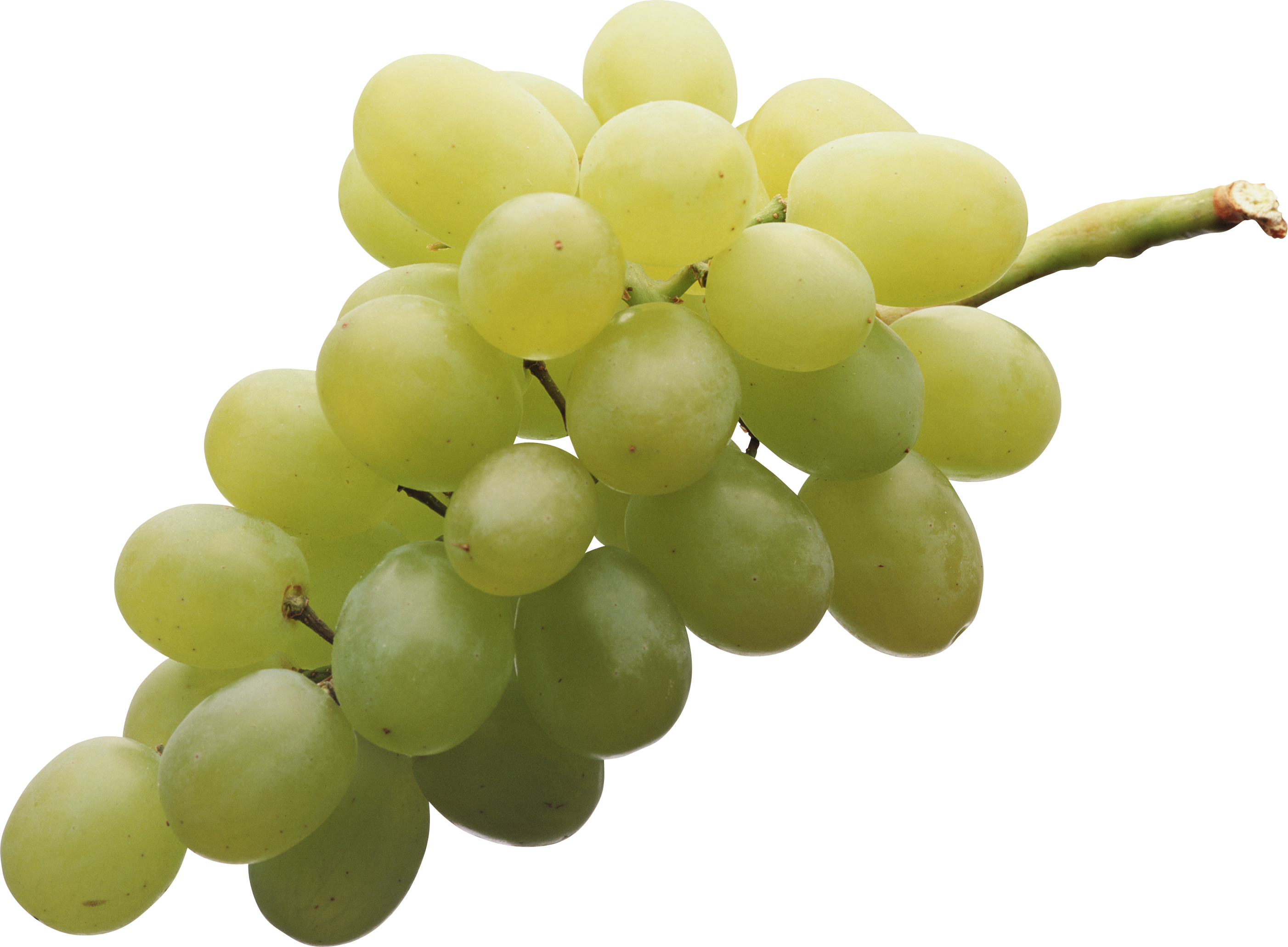 Grape transparent green. Grapes png image purepng