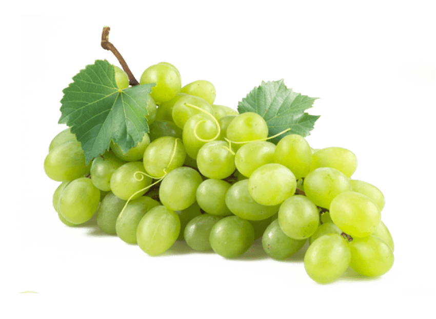 Grape transparent green. Grapes png free images