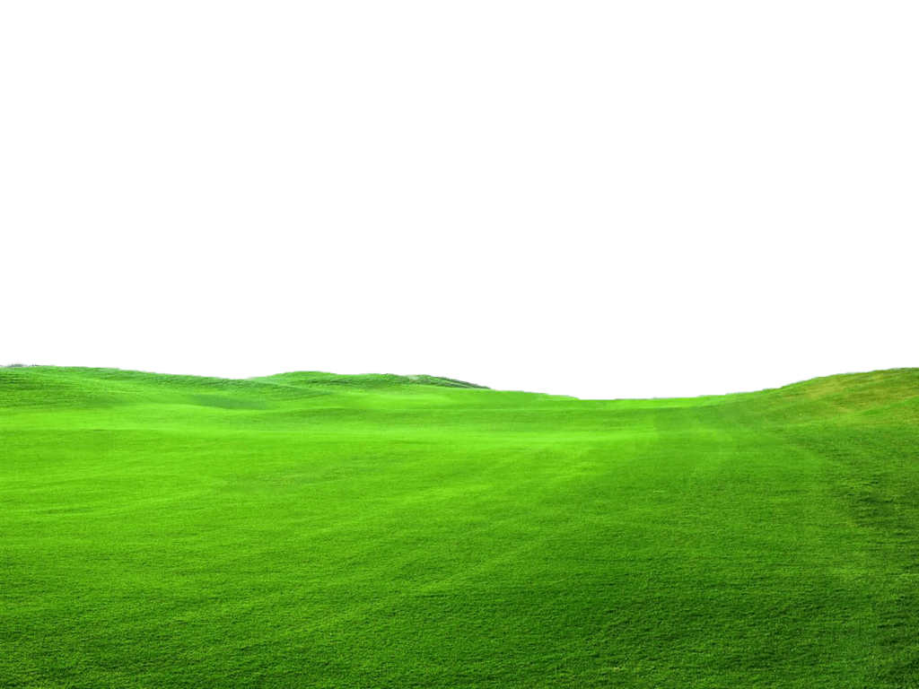 Green lawn png. Transparent grass top turf
