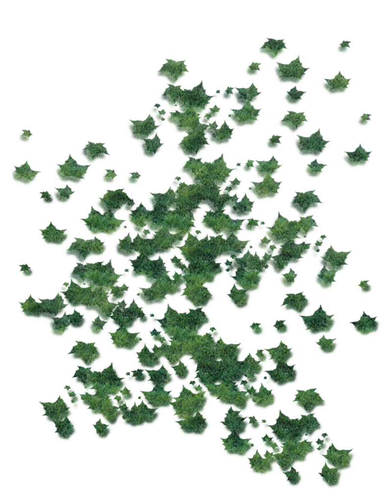 Green leaves falling png. By moonglowlilly on deviantart