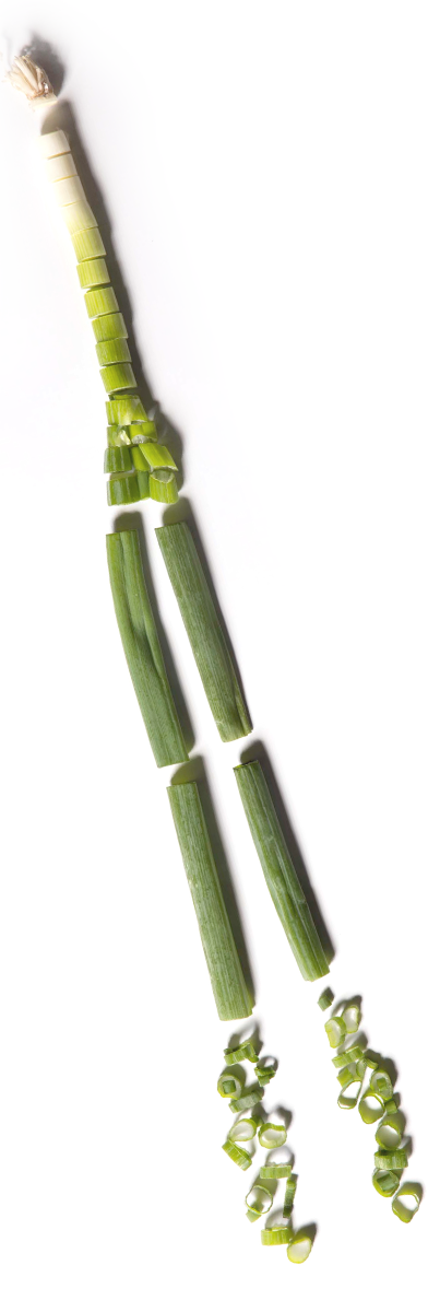 Green onions png. The onion story p